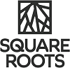 Square Roots Accelerator
