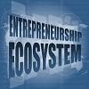 Entrepreneurial ecosystem