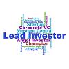 Lead Investor